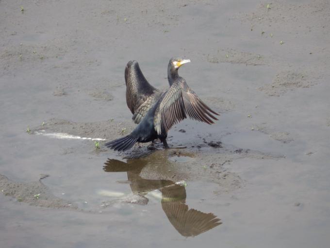 会社を辞める時は立つ鳥跡を濁さずで行こうね。
