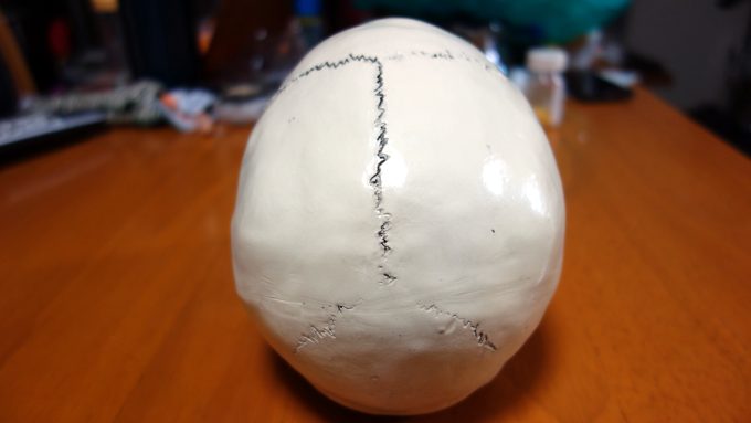 リアルなドクロ(頭蓋骨模型)