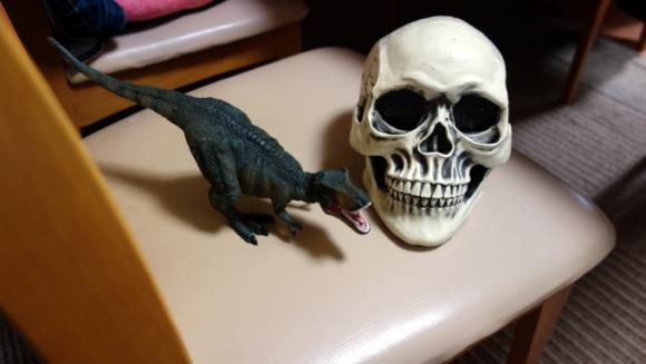 【実験】Amazonで買ったリアルなドクロ(頭蓋骨模型)を嫁の席に鎮座させた結果・・・